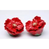 poppy-flower-saltpepper